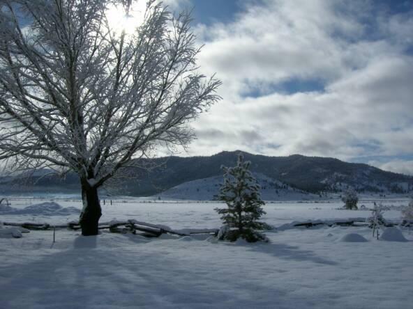 http://www.loneliesttowninamerica.com/Houses_and_winter_002_op_592x444.jpg